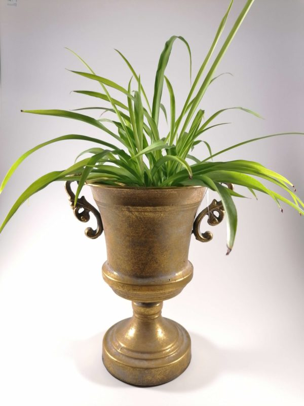 Retro vaza